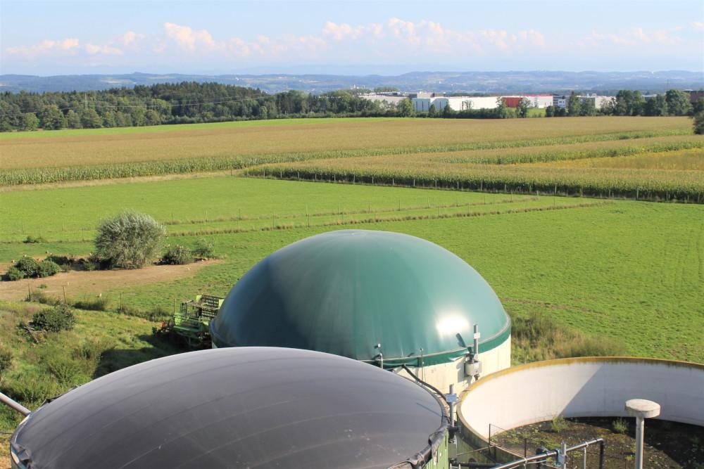 Biogas Landwirtschaft